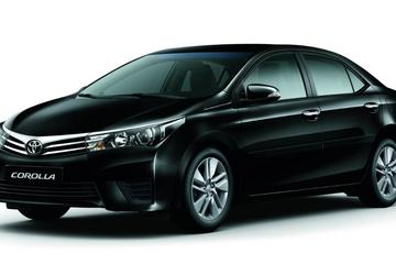 Private Arrival Transfer from Salvador Airport to Hotel by Car