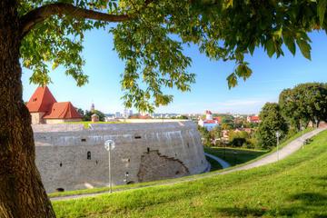 Tour privato: giro a piedi dei punti panoramici di Vilnius attraverso