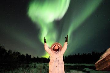 Rovaniemi Northern Lights Private