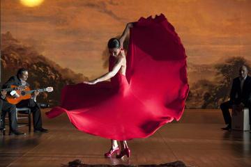 Espectáculo de flamenco en las Cuevas del Sacromonte en Granada