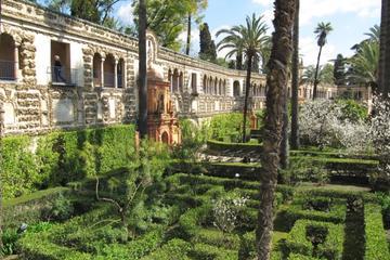Excursion privée de l'Alcazar de Séville pendant 1heure et demie