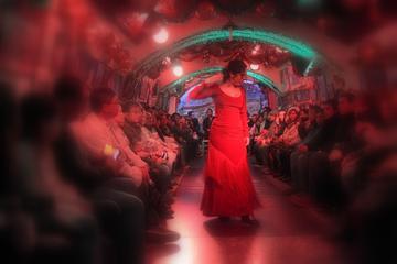 Granada Sacramonte Caves Flamenco Show with Albayzin Tour