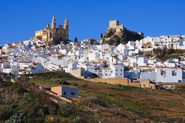 Pueblos Blancos: excursión de un día...