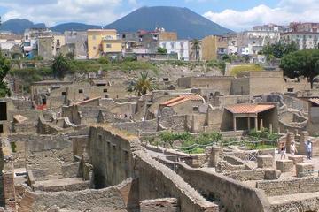 Half-Day Trip to Herculaneum from Amalfi, Maiori, or Ravello