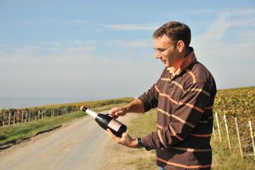 Visite en petit groupe de 3heures de vignobles de la région de...