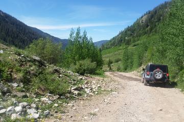 Book 2-Hour Sunset Twilight 4x4 Jeep Trail Tour on Viator