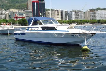 Excursão particular para grupos pequenos em barco a motor no Rio de...