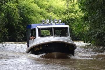 Excursão de meio dia privada de barco...