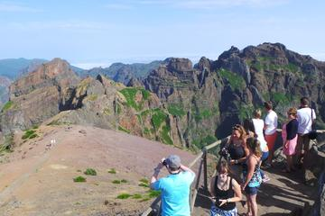 Majestic Mountains of Madeira Jeep...