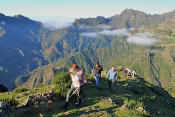 Penhascos e Vales da Madeira em Excursão de Jeep saindo de Funchal