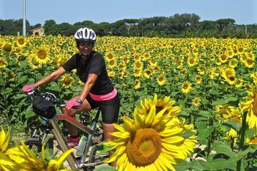 Versilia Electric Bikes Tour from Lido di Camaiore