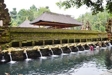 Private Ubud Tour: Batubulan Village, Tirta Empul Temple, Monkey...
