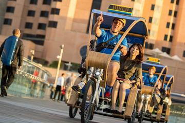 Adelaide City Tour by Pedicab