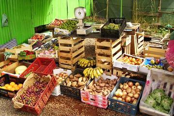Excursão de dia inteiro Mercado de domingo e delícias da zona rural...