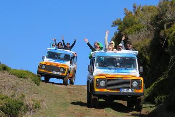 Tour de safari en jeep de medio día o...