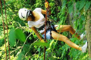 Excursión de aventura en Puerto Vallarta: tirolina, rappel y...