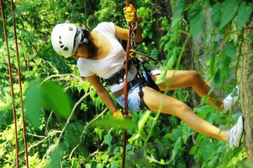Puerto Vallarta Adventure Tour...