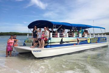 Crucero para ver conchas, delfines y...