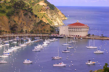 Day Trip Catalina Island Day Excursion near Santa Monica, California