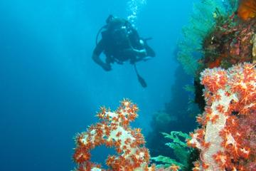 3-Day PADI Open Water Scuba Diving ...