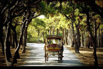 Istanbul Princes Island Tour
