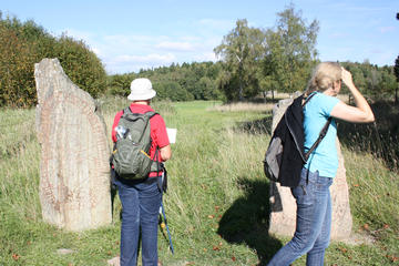 Private Half Day Tour: Viking History Trip from Stockholm