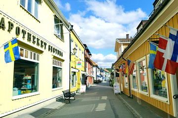 Sigtuna Tour from Stockholm - Roots of Sweden