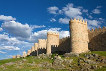 Recorrido de un día guiado en Ávila y Segovia desde Madrid con...