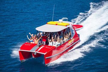 Crociera di un giorno alle Whitsundays in catamarano ad alta velocità