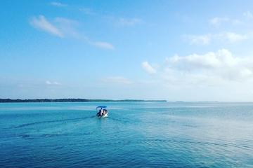 Snorkel trip with beach bbq