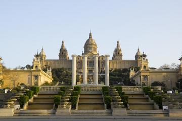 Entrada para el Museo Nacional de Arte de Cataluña, en Barcelona