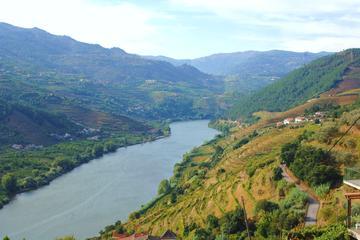 Excursão de dia inteiro a surpreendente região do Vinho do Douro com...