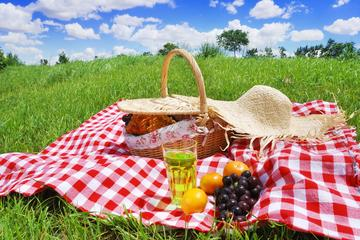 Andalusian Picnic in the country side