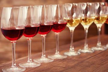 Luxury Wine Tasting in Bolgheri