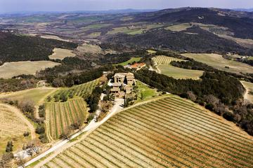 Montalcino Wine Tasting with Light Lunch