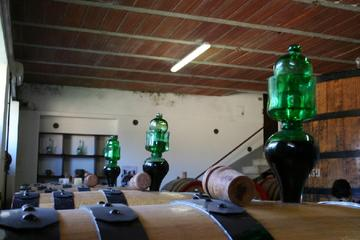 Tour di un giorno intero del vino Brunello