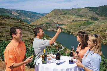 Wine Tasting at the Portal Winery in Douro Valley
