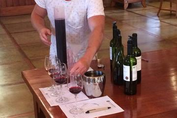 Be a Winemaker for a Day Experience...