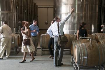 Valle del Maipo para los amantes del vino