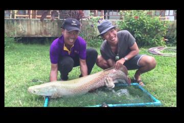 Freshwater Lake Fishing Tour from Koh Samui