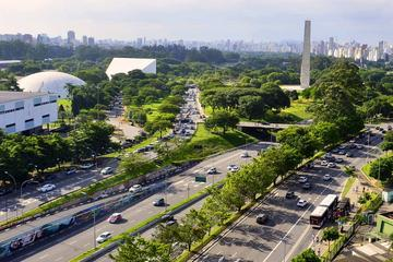 Guided Art and Cultural Walking Tour of Ibirapuera Park