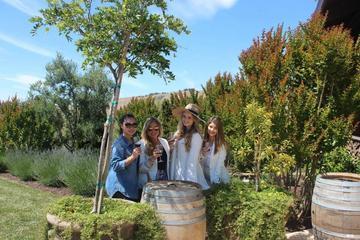 Excursão para as Vinícolas de Napa...