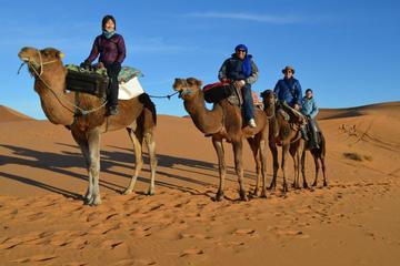 Privétour met overnachting in de Sahara met kamelentocht en ...
