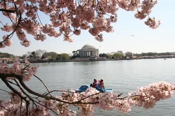 ワシントンDCの主な名所を巡る半日ツアー