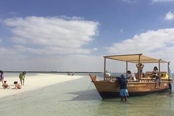 Dolphin Bay: Eintägige Bootstour zu abgelegenem Naturstrand ab Abu...