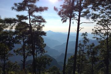 Excursión privada: Observación de aves y senderismo en las montañas...