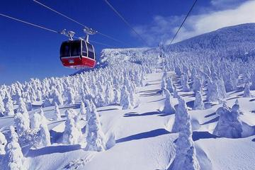 2-Day Juhyo Forest and Zao Onsen Tour from Tokyo