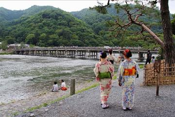 7-stündige private Kyoto-Tour...