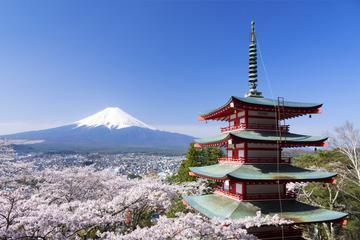 Cherry Blossoms at Lake Kawaguchi & Five-story Pagoda, Day Trip from Tokyo