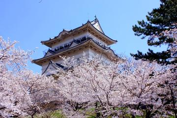 Day Trip to the Odawara Castle Park...